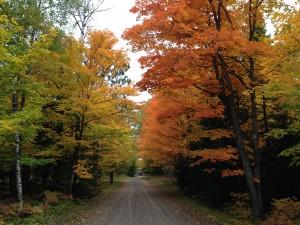 Margaret Lake Road color